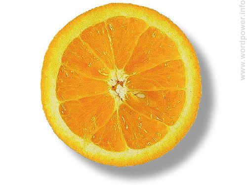 A photo quality image of an orange